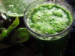 Món ngon hàng ngày với tảo mặt trời