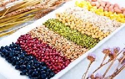 3 loại thực phẩm đặc biết giúp xương chắc khỏe.