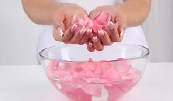 Điểm danh 6 tác dụng của nước hoa hồng dành cho phái đẹp