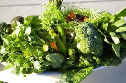 Bạn đã biết ăn gì để giảm cân nhanh nhất trong 1 tuần chưa?