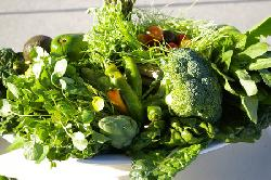 Bật mí cách ăn uống để tăng cân nhanh và hiệu quả cho cả nam và nữ