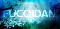 Fucoidan có chữa được ung thư? Fucoidan chữa bao lâu thì khỏi?