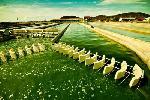 Tảo mặt trời Spirulina ra đời như thế nào?