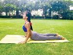 Top 6 Bài Tập Yoga Giúp Tăng Cân Nhanh Và Hiệu Quả Nhất Tại Nhà