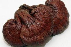 Nấm linh chi đỏ Thượng Hạng của Hàn Quốc