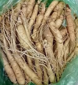 Sâm hầm gà – Sâm tươi 30- 40 củ 1kg chính hãng của Hàn Quốc