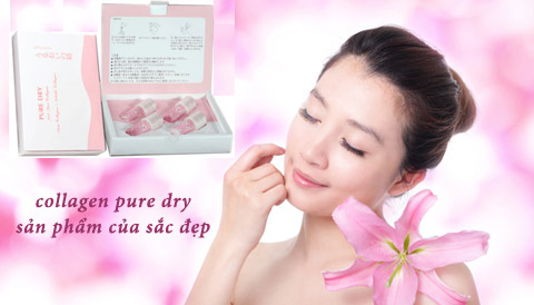Pure dry collagen hộp 4 ống
