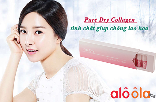 collagen pure dry
